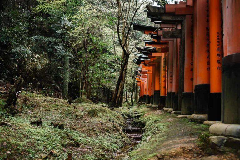Tore des Fushimi-Inari Schreins in Kyoto